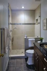 Images Of Remodeled Small Bathrooms Interesting Small Bathroom Remodels Pictures Design Pictures Remodel Decor