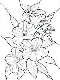 flower coloring pages printables detailed flower coloring pages flower coloring pages printable free free coloring pages