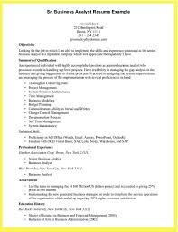 Sample Resume Business Analyst Resume Sample Doc Cometmerchcom