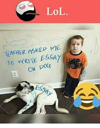✅ best memes about writing essay writing essay memes memes 🤖 and teachers lol teacher askep to write essay on dog