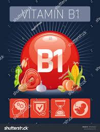 Vitamin B1 Food Chart Thiamine Vitamin B1 Food Icons Healthy Stock Vector Royalty