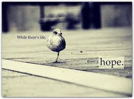 Beautiful Hope Quotes