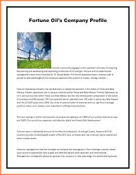 Best Company Profile Format 24 Pany Profile Sample For A New Pany Best Ideas Of Company Profile 22