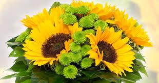 Výsledek obrázku pro obrázky květin