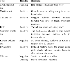 Biochemical Test Chart Identification Results Of Biochemical Test Of Bacteria Download Table