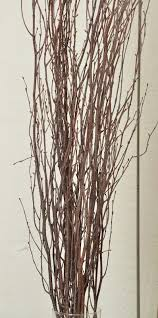 Decorative Birch Branches For Sale larger image