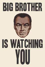 Amazon.com: BIG BROTHER IS WATCHING YOU ...