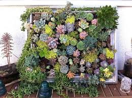 garden photo frames. Garden Picture Frame With The Ubiquity Of Rotting Wooden Frames Lying Around You Should Have . Photo