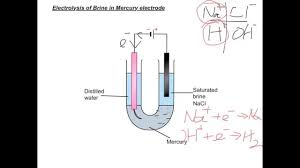 dse07 16 electrolysis of brine with mercury electrode