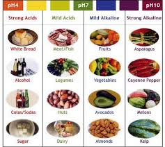 Alkaline Producing Foods Chart What Is The Utility Of Alkaline Food
