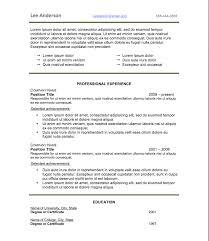 Resume Style 3