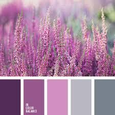 фиолетовый и <b>серый</b>   IN COLOR BALANCE