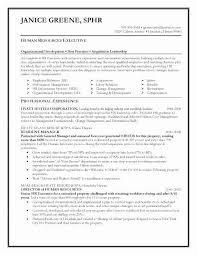 C Level Resume Inspiration C Level Executive Assistant Resume College Graduate Resume Example