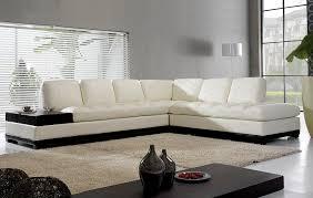 Modern L Shaped Sofa Design Modern Minimalist Contemporary Black Table  Decorations Window Lamp Steel Vase Plants