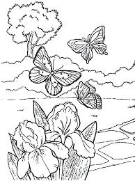 flower and butterfly coloring pages. Plain And Coloring Pages Of Flowers And Butterflies  On Abstract Inside Flower And Butterfly Coloring Pages R