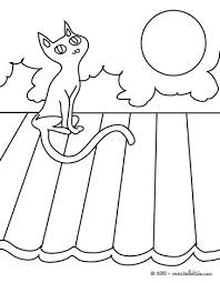Small Picture Bat black cat coloring pages Hellokidscom