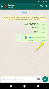 text someone from computer how to tell if someone has read your whatsapp message even if they