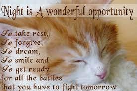 Good Night Fb Quotes. QuotesGram