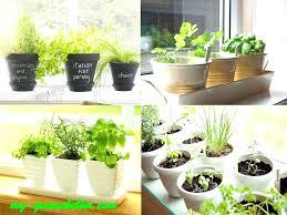 indoor herb garden kit herb garden kit indoor indoor herb gardens for beginners indoor herb garden