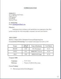 best resume maker software     sample template example    best resume maker software     sample template example of excellent curriculum vitae   cv format