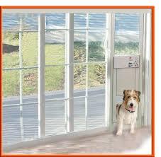 fullsize of door with dog door built in