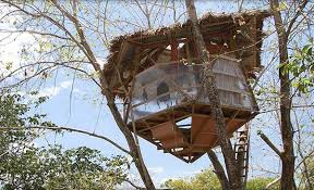architecture how to build a treehouse32 how