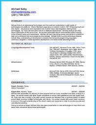Sql Server Developer Resumes How Professional Database Developer Resume Must Be Written