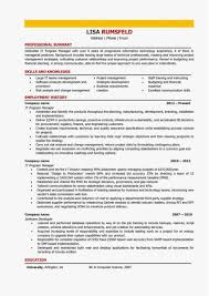 It Director Resume Resume Work Template