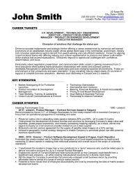 Apa Resume Template Adorable Click Here To Download This Vice President Of Development Resume