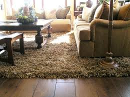 Interesting Best Living Room Carpet