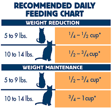Blue Weight Control Dry Cat Food Chicken Brown Rice