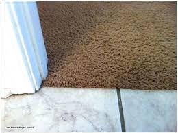 carpet to concrete transition carpet to tile transition strip schluter carpet to concrete transition carpet to concrete transition image of carpet tile