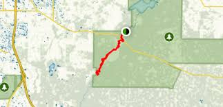 Myakka River Tide Chart Lower Myakka River Paddle Florida Alltrails