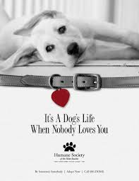 humane society ads. Beautiful Ads This Is An Example Of Visual Persuasion In Advertising Through This Ad  The Humane Intended Society Ads T