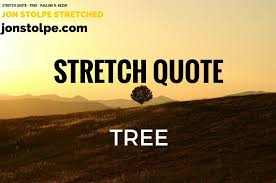 Band Quotes Extraordinary Stretch Quote Tree Pauline R Kezer