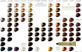 Hair Color Chart Shades More Images In 2019 Hair Color