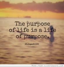 My Purpose In Life Quotes Magnificent My Purpose In Life Quotes Best Life's Purpose Let It Go