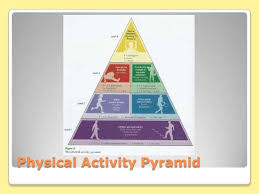 3 Components Physical Fitness