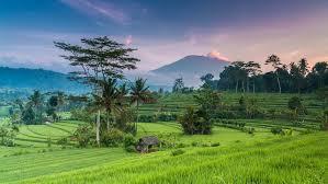 ashtanga yoga retreat bali indonesia