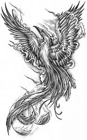 Drawings Of Phoenix Collection Of 25 Freebies Phoenix Tattoo Designs