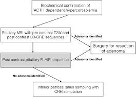 Flow Chart Showing Potential Pituitary Imaging Protocol For