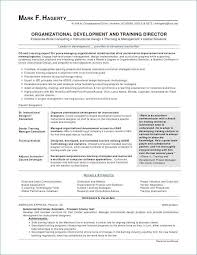 Good Resume Layouts Cool Best Professional Resume Writers Best Of Best Resume Layout Lovely