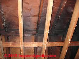 building fire smoke odor removal find remove persistent sources of fire or smoke odors smells
