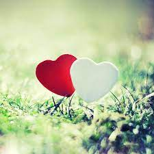 Top romantic wallpaper hd Download ...