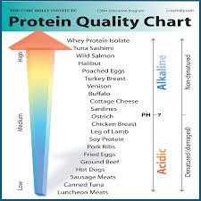 Protein Teamrich Wordpress Com