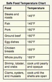 Safe Meat Temperature Chart Top 25 Best Meat