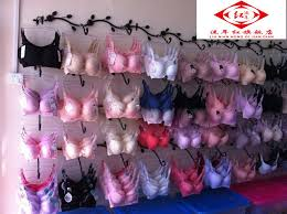 Bra Display Stand 100pcs Clothing display rack inside the wall hanger underwear bra 19