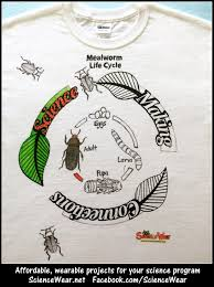 T Shirt Making Program Mealworm Life Cycle Project Who Wouldnt Love Making And Wearing