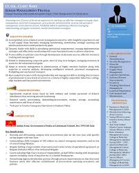 Sample Visual Resume Free Resume Example And Writing Download