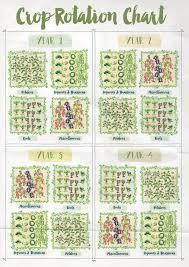 Crop Rotation Chart Vegetable Gardening Pin On Gardens